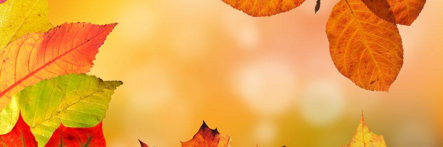 Herbstferien